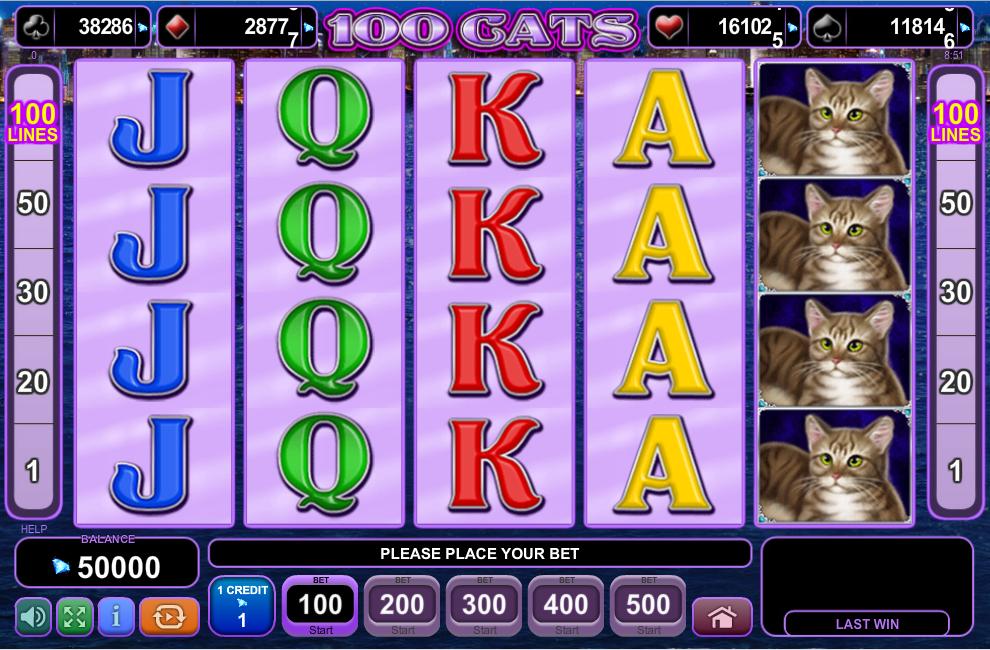 100 Cats Slot