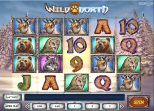 Online Wild North Slot