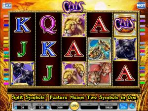 Slot Machine Cats Online